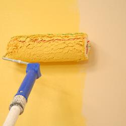 Painter Services in Dubai